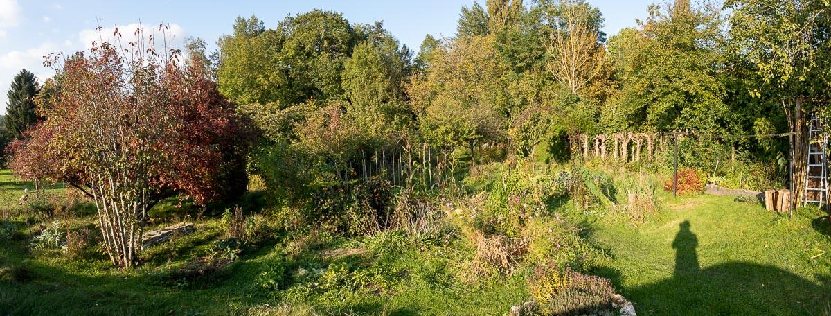 Potager à l'automne
